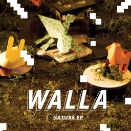 Scores for WALLA - Crazy World